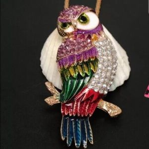 Betsey Johnson Jewelry - Betsey Johnson owl necklace